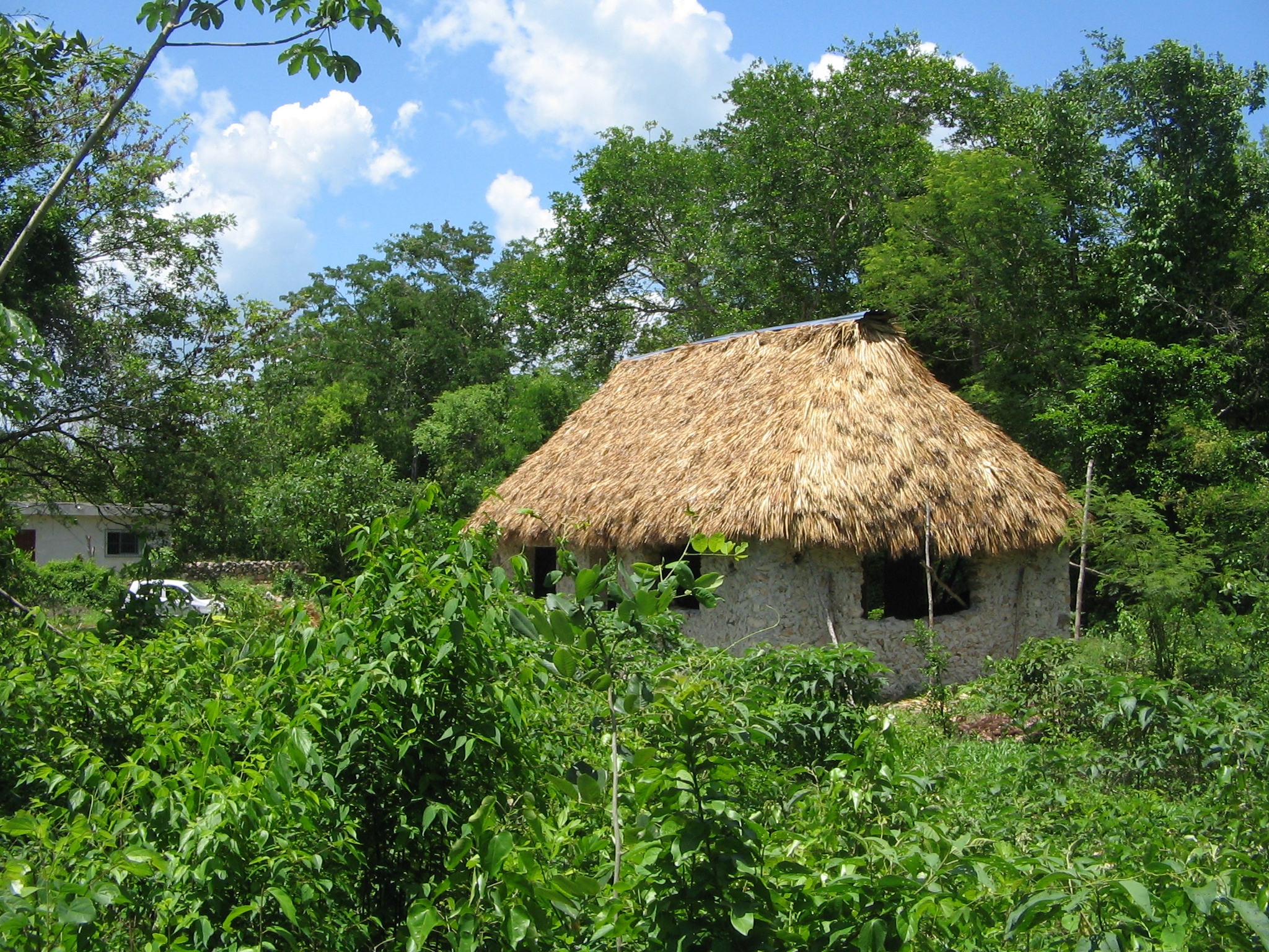 yucatan